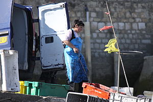 Retour de la pêche à la seiche du fileyeur Jason IV (60).JPG