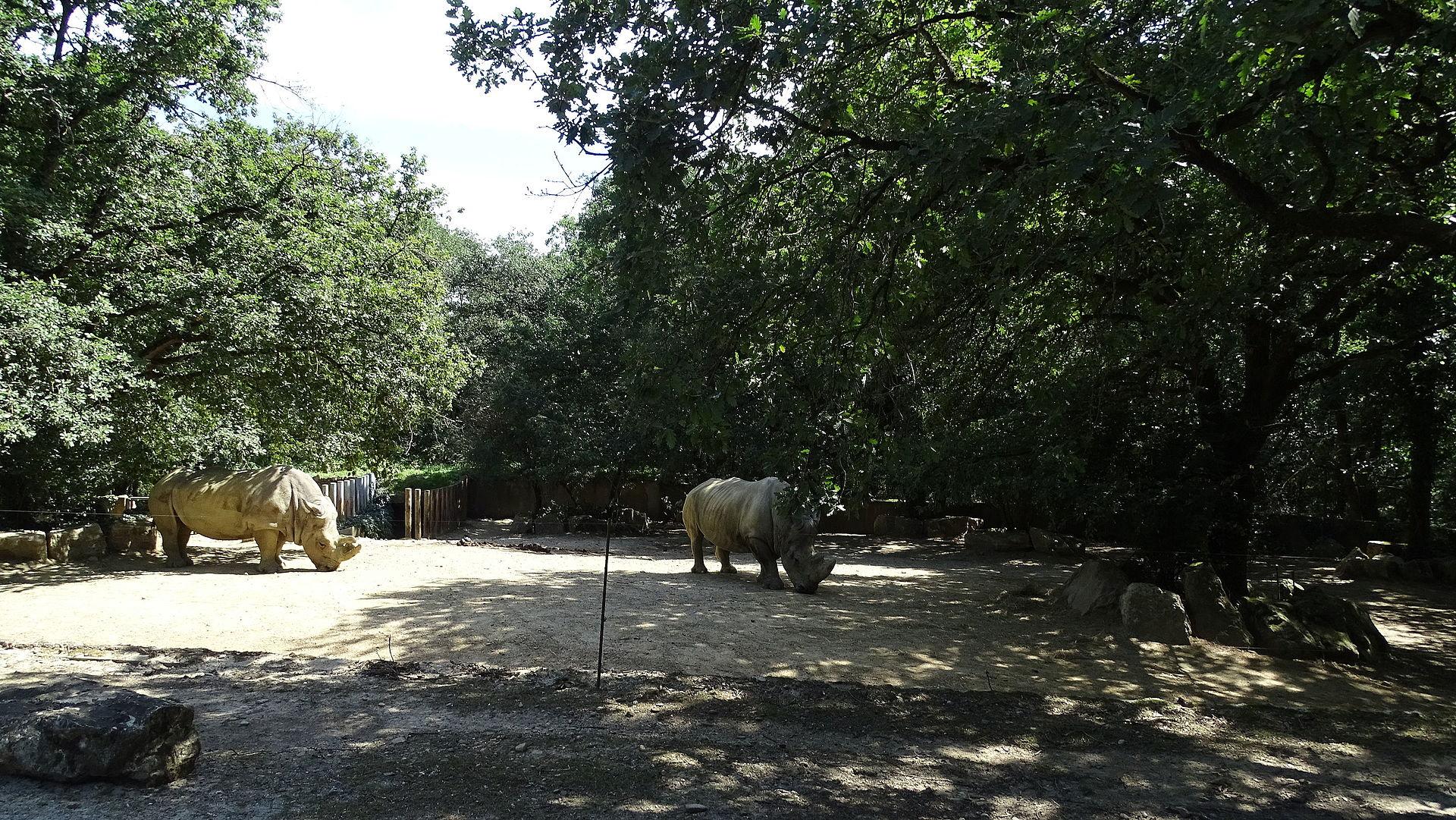 parc zoologique de plaisance du touch wikip dia