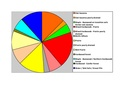 Rice Co Pie Chart No Text Version.pdf