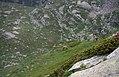 Rifugio Jervis Ceresole Reale.jpg