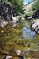 Rio Tuela - Portugal (24228363667).jpg