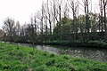 River Derwent from the Centenary Way - geograph.org.uk - 1270098.jpg