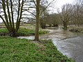 River Gipping towards Needham Market - geograph.org.uk - 1779015.jpg