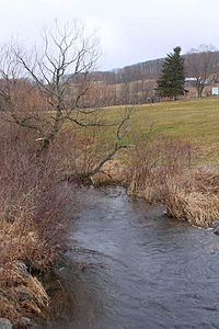 Rogers Creek looking upstream.JPG
