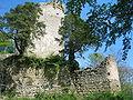 Ruine Altbodman.JPG