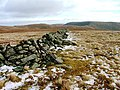 Ruined Wall, Thornthwaite Crag - geograph.org.uk - 110674.jpg