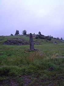 Runstenen vid Hoga på Orust, sedd från platsen för äldre fägata, den 2 september 2005..JPG