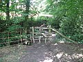 Rustic stile at Moon's Wood - geograph.org.uk - 1435443.jpg