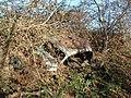Rusty Car - geograph.org.uk - 291623.jpg
