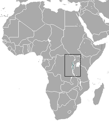 Ruwenzori Shrew area.png