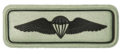 SANDF Qualification Paratrooper Dispatcher badge embossed.png