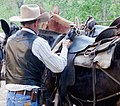 Saddle Up, Zion National Park 2014 (27905032493).jpg
