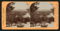 San Bernardio Valley, Cal., U.S.A, from Robert N. Dennis collection of stereoscopic views 2.png
