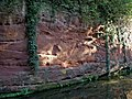 Sandstone by the Staffordshire and Worcestershire Canal - geograph.org.uk - 1025522.jpg
