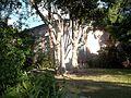 Sarasota FL William House03.jpg