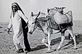 Saudi Man Leading Donkey by Contributed By Patricia And Mansur Abahusayn On Behalf Of Matthew And Ester Bunyan 202 2068.jpg