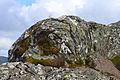 Scotland Highlands (19043708098).jpg