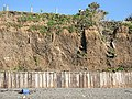 Sea Cliffs at Downderry - geograph.org.uk - 201512.jpg