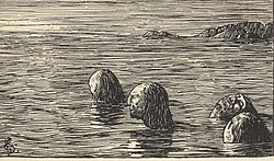 According to Heimskringla, During the Christianization of Norway, King Olaf Trygvasson had male völvas (shamans) tied up and left on a skerry at ebb.