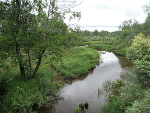 Petushinsky District - Senga River, Petushinsky District