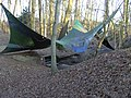 Serach Mystic Place Forest camouflage tent 2009.JPG