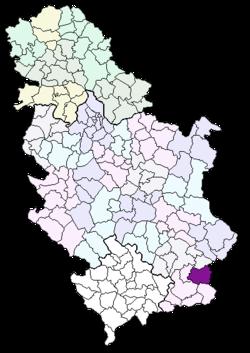 surdulica mapa Општина Сурдулица — Википедија, слободна енциклопедија surdulica mapa
