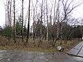 Seversk, Tomsk Oblast, Russia - panoramio (167).jpg