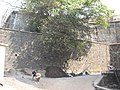 Sewree fort exterior.jpg