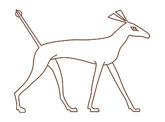 Set animal - Image: Sha (animal)