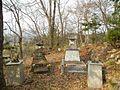 Shinshushinmachi Nakamaki, Nagano, Nagano Prefecture 381-2415, Japan - panoramio.jpg