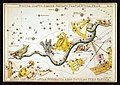 Sidney Hall - Urania's Mirror - Noctua, Corvus, Crater, Sextans Uraniæ, Hydra, Felis, Lupus, Centaurus, Antlia Pneumatica, Argo Navis, and Pyxis Nautica (whole card).jpg