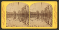 Silver Spring River, from Robert N. Dennis collection of stereoscopic views.png