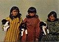Six Little Arctic Natives (NBY 430901).jpg