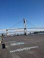 Skybridge0384.jpg