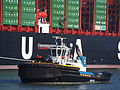 Smit Panther (tugboat, 2009) IMO 9434814 Callsign C6XV7 Amazonehaven Port of Rotterdam pic3.JPG