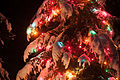 Snowy tree with Christmas lights.jpg