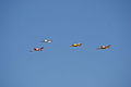 Socata TB-30 Epsilon leads Beech T-34B Mentors Chevron Pass 02 TICO 13March2010 (14599511675).jpg