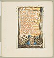 Songs of Innocence and of Experience- The Human Abstract MET DP816694.jpg