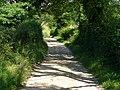 South Downs Way, near Buriton - geograph.org.uk - 514454.jpg