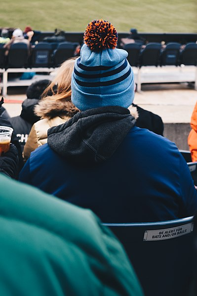 File:Spectator in bobble hat at the Yankee stadium (Unsplash).jpg