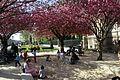 Square Jean-XXIII, Paris 13 April 2015 002.jpg
