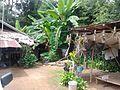 Srisongkhram garden Phonpisai, Nong khai, Thailand - panoramio (8).jpg
