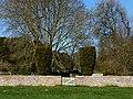 St Nicholas' churchyard - geograph.org.uk - 1225584.jpg