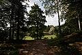 St Petersburg - Pávlovsk - Pavlovskiy park 1777 2.jpg