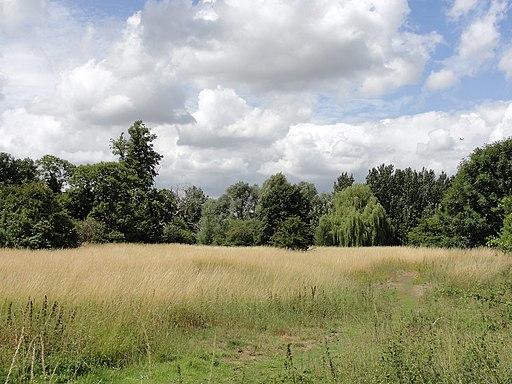 Staines Moor - panoramio