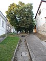 Stairs and drainage, Dozsa Street, 2016 Szekszard.jpg