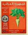 Stamp IQ 1970 30f.jpg