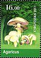 Stamps of Kyrgyzstan, 2011-30.jpg