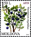 Stamps of Moldova, 2013-05.jpg