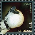 Stamps of Romania, 2005-106.jpg